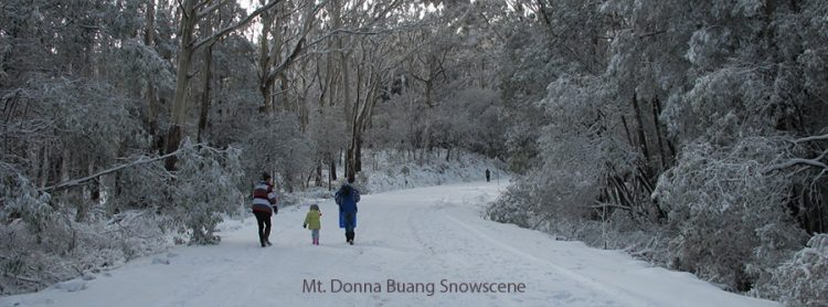 winter-warburton
